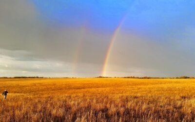 MPF's Penn-Sylvania Prairie Sets New World Record