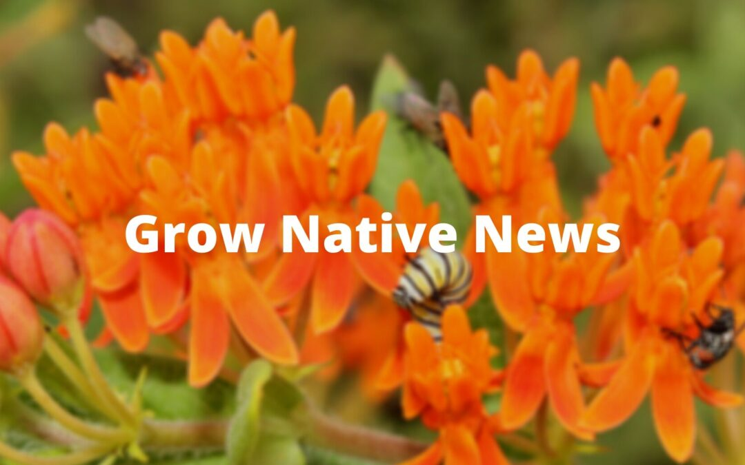Grow Native! Program Recognizes 20th Anniversary of Promoting Native Plants