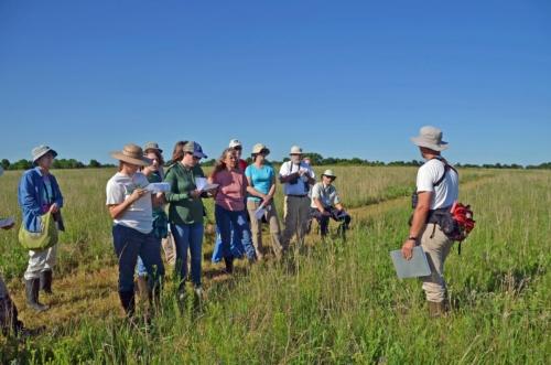 Prairie ecology tour at Linden's Carol Davit