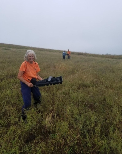 volunteers in the field, planting plugs at Snowball Hill Prairie