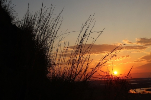 sunset silhouetting prairie grasses and reflecting on river below