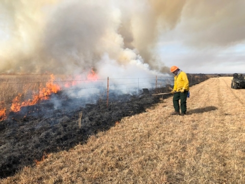 Person in safety gear conducting prescribed fire in field