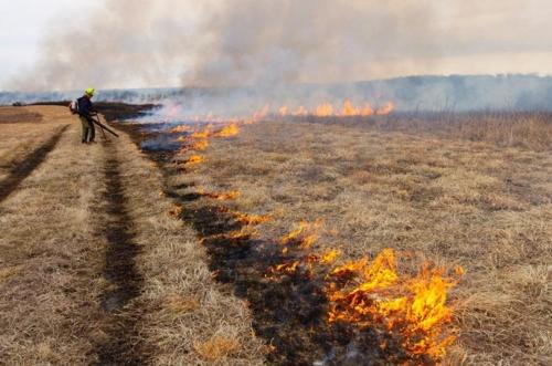 prescribed burn at stilwell prairie