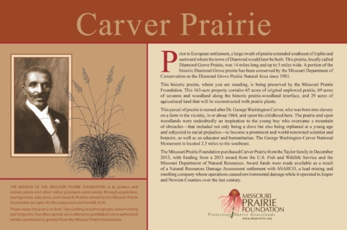 Information sign at Carver Prairie featuring Dr. George Washington Carver, the prairie's namesake