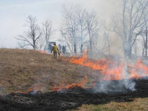 Controlled burn at Snowball Hill Prairie