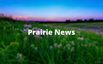Missouri Prairie Foundation Bestows 2020 Awards