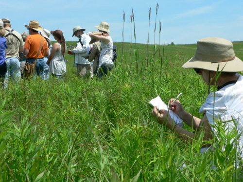 Participants in the field with notebooks during MPF Prairie BioBlitz