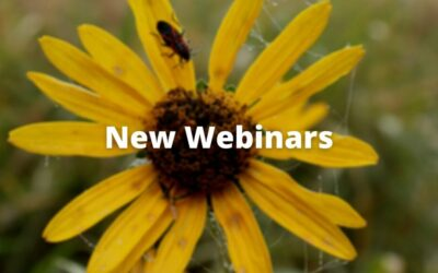 MPF and Grow Native! Webinars and Master Classes