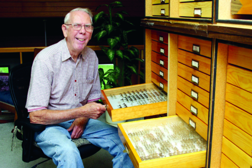 Rae Letsinger sits next to his drawers of pinned moths