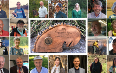MPF Receives Conservation Impact Award