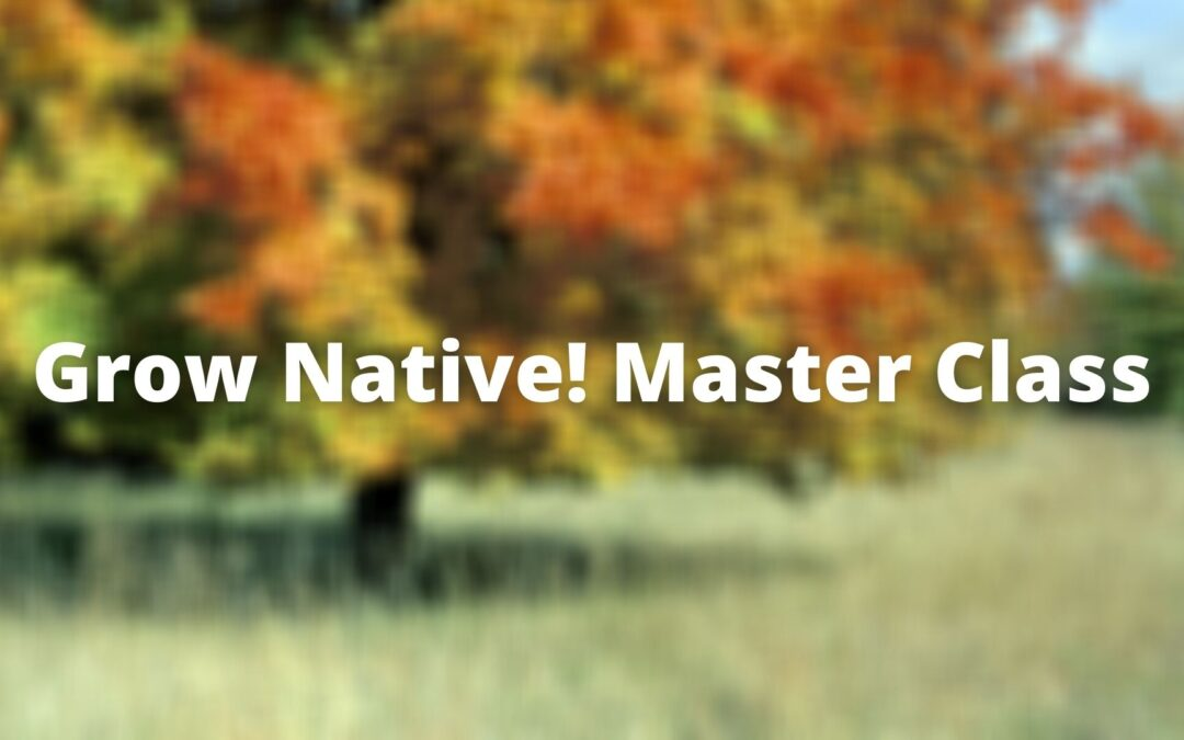 Grow Native! Master Class: Phytoremediation with Native Plants with Eric Fuselier
