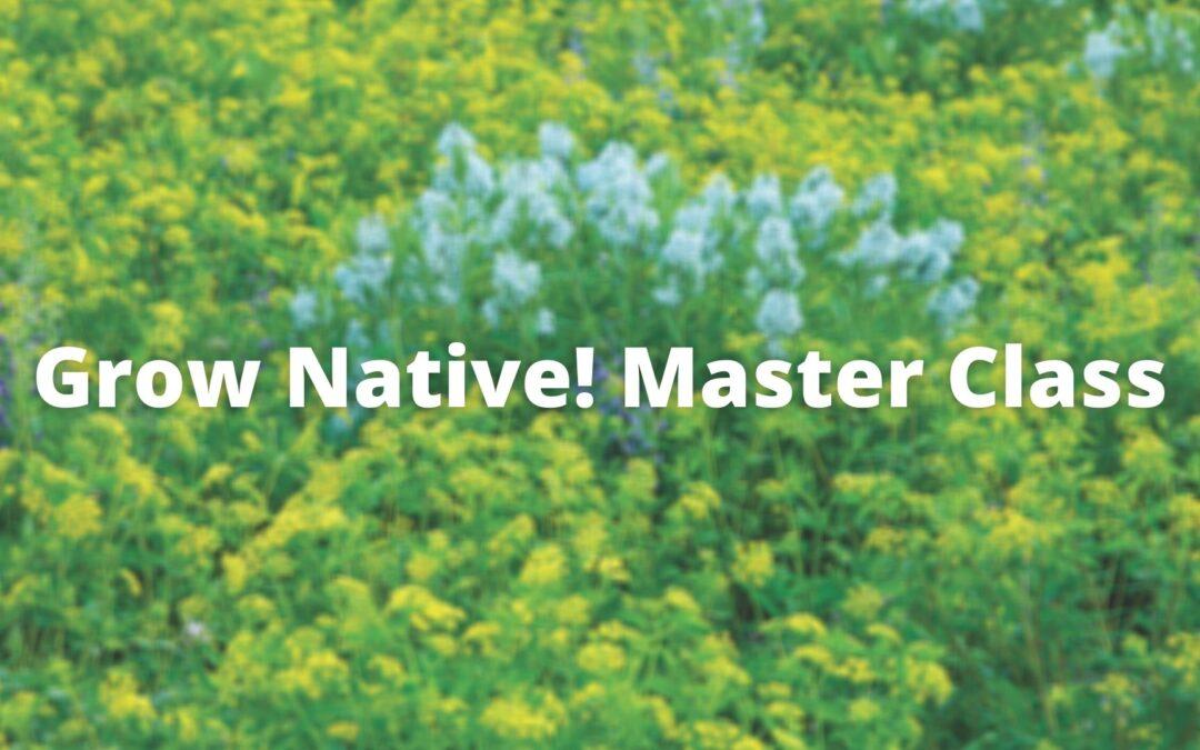 Grow Native! Master Class: Native Alternatives with James Faupel