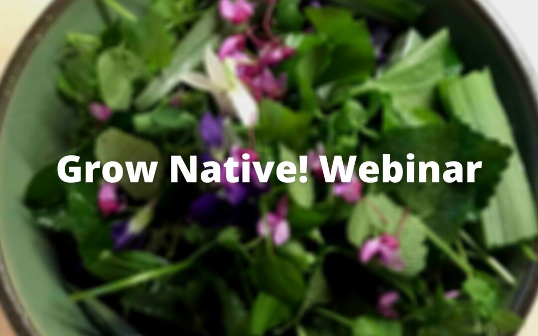 Grow Native! Webinar: 10 Easy-To-Grow Spring Edible Native Plants for Your Garden with Nadia Navarrete-Tindall