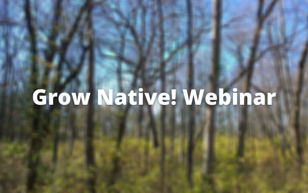 Grow Native! Webinar: Invasive Plant Q & A with Dr. Quinn Long and Matt Arndt