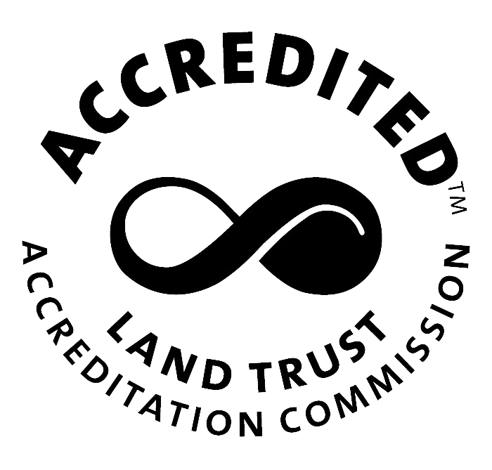 LTA Accredited Logo