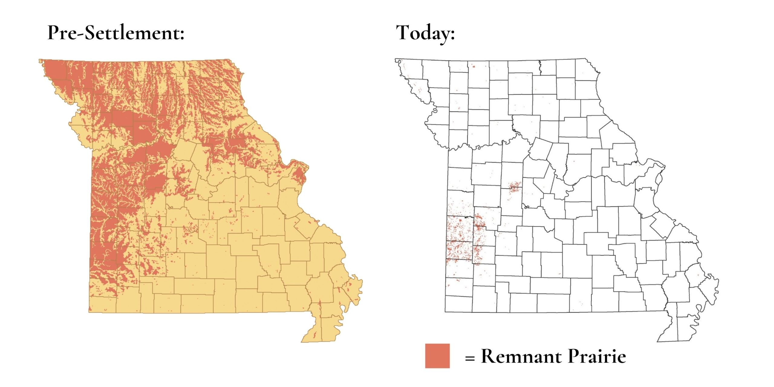 Two maps of Missouri, the first one with large sections of dark orange representing 15 million acres of prairie pre-settlement, and the second map with very little dark orange, showing the fewer than 60,000 scattered acres of prairie today