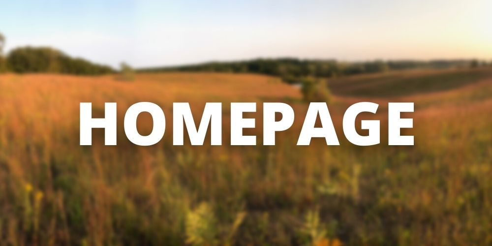 """Button for """"Homepage"""" with blurred fall prairie in the background"""