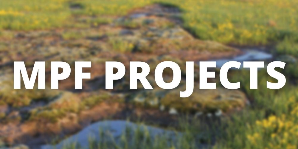 """Reads """"MPF Projects"""" with a blurred prairie in that background"""